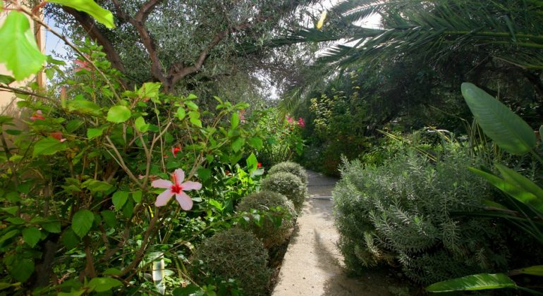 Mature gardens with private paths