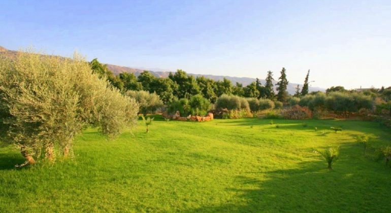 Beautiful lawn gardens with fruit trees