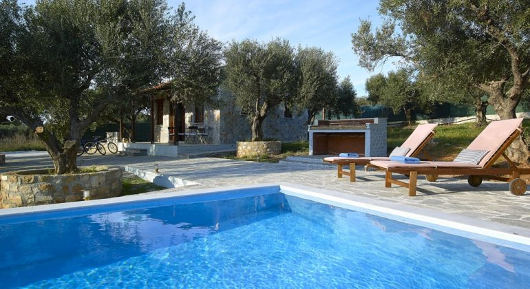 Pool surrounded by olive trees