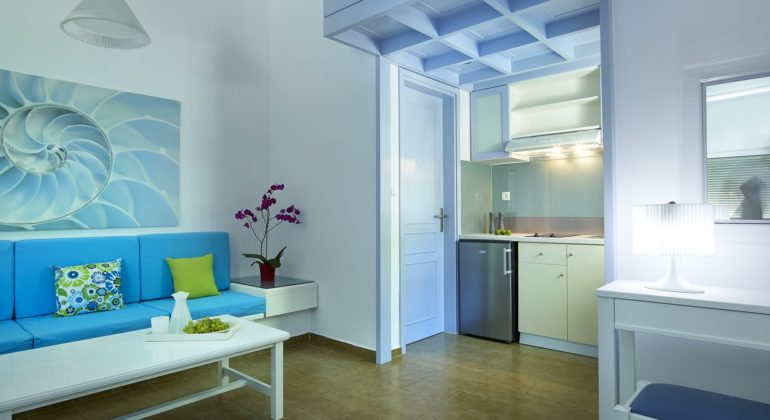 The studio with kitchenette and living area